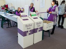 How Senate preferential voting works