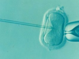 Victorian government cracks down on unscrupulous IVF providers