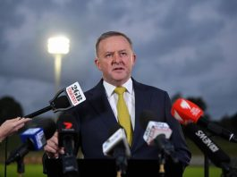 Anthony Albanese is the anointed opposition leader