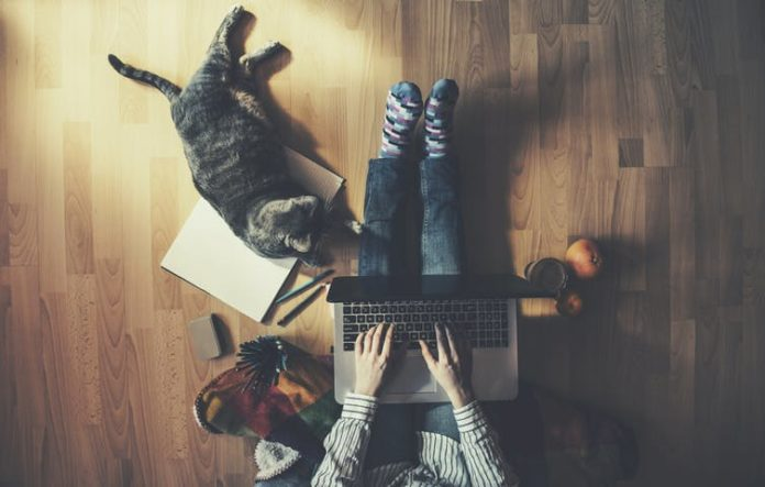 working from home | Image: shutterstock